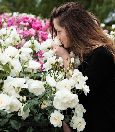 sniffing-flowers-1348656_960_720